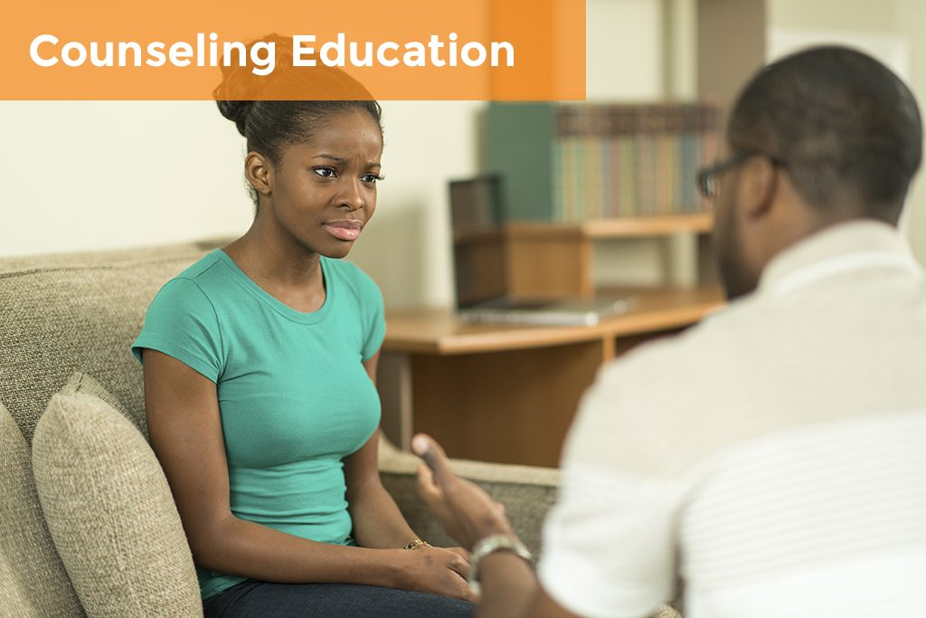 Counseling Education Case Study