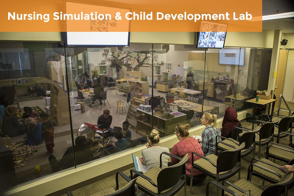 Nursing Sim and Child Dev Lab Case Study